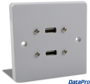 European Dual USB Wall-Plate